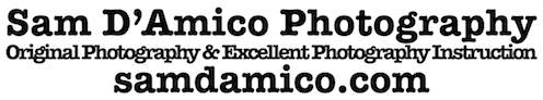 Sam D'Amico-Photography And Photography Classes