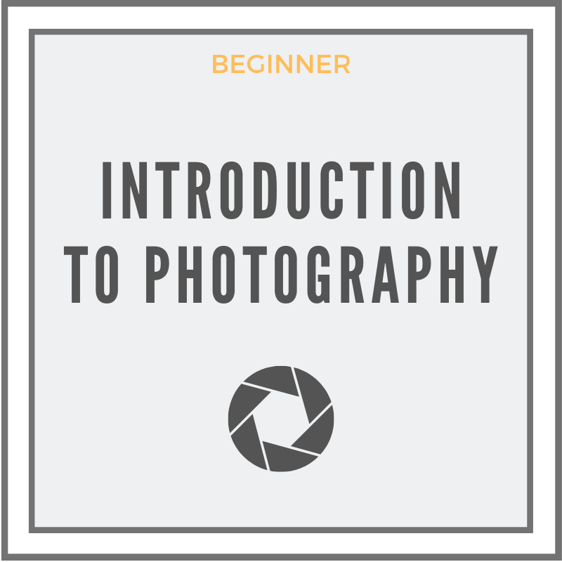 Learn more about this photography class-Introduction To Photography Class In Washington DC